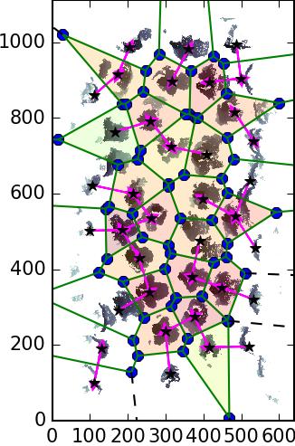 Voronoi_dense_delaunay_closest